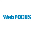 Web Focus Business Intelligence Software