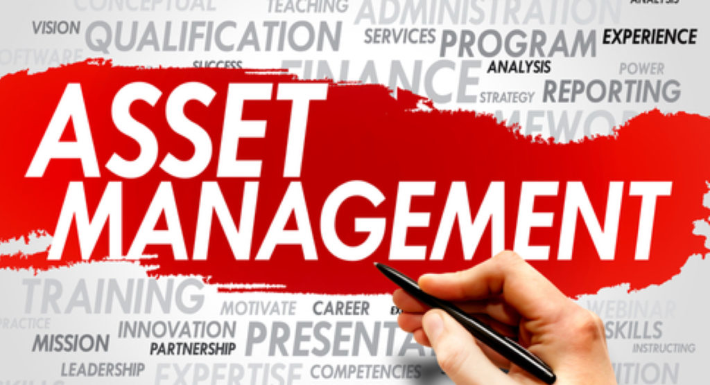 assest management software