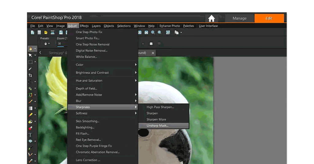 Paint Shop Online Photo Editor to Blur Background