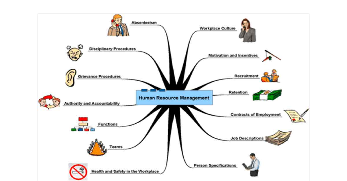 Key Role of HR Managers